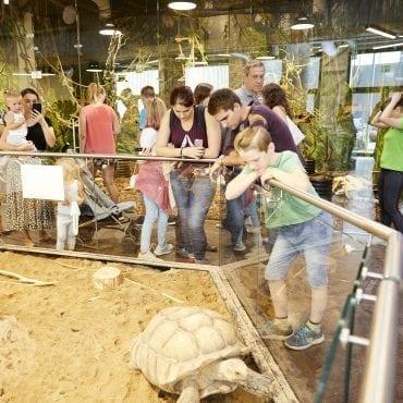 Zoologijos sodo ZOOPARK atidarymo akimirkos