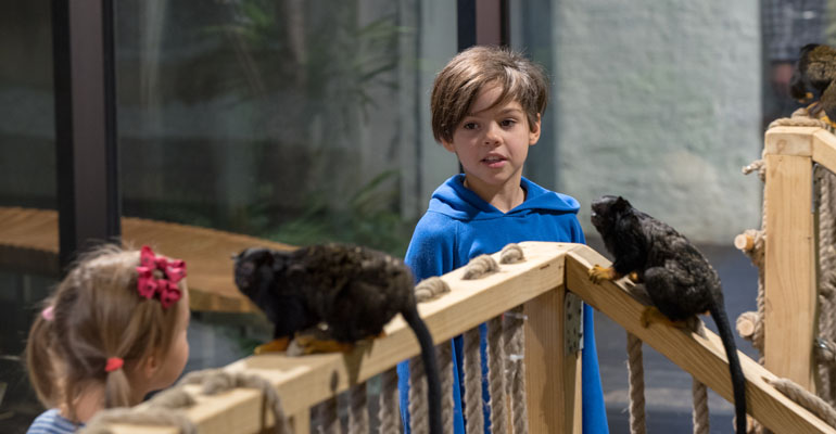 Pasiūlymas moksleiviams: praleiskite nuotykių kupiną dieną Zooparke