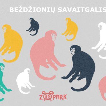 Edukacijų dienos: Beždžionių savaitgalis!